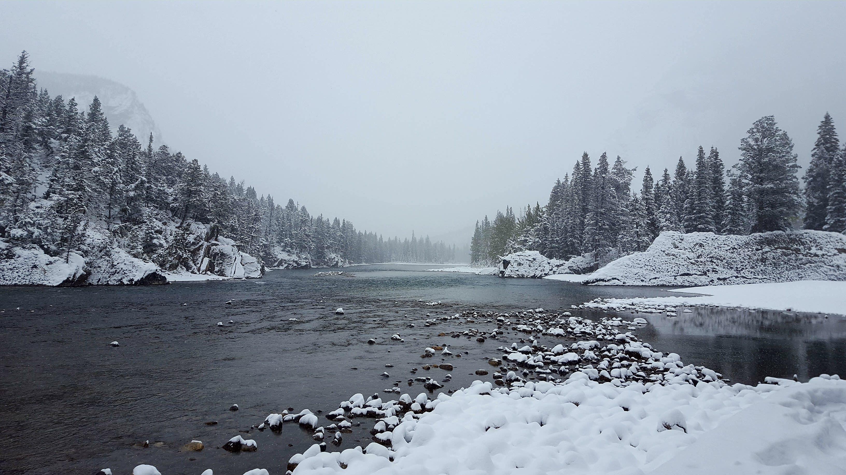 Free stock photo of #banff #canada #bowlake #landscape