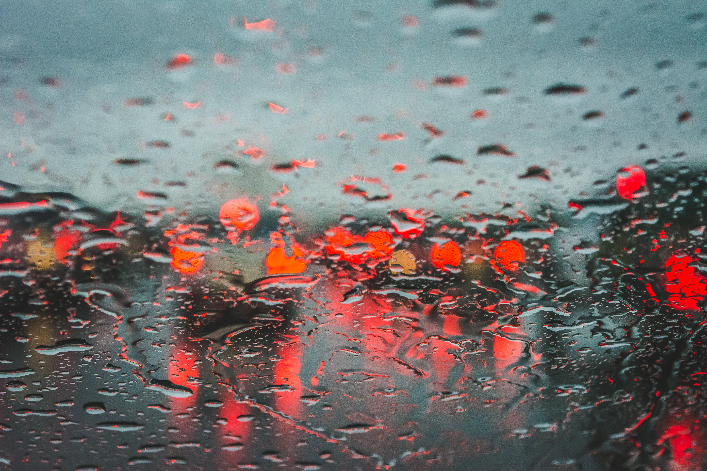 Closeup Photography of Dew Drops