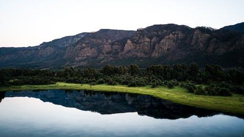 Gratis lagerfoto af bjerg, dagslys, flod