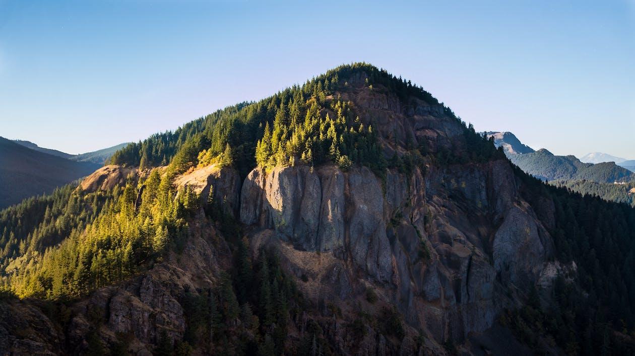 4k wallpaper, bäume, berg