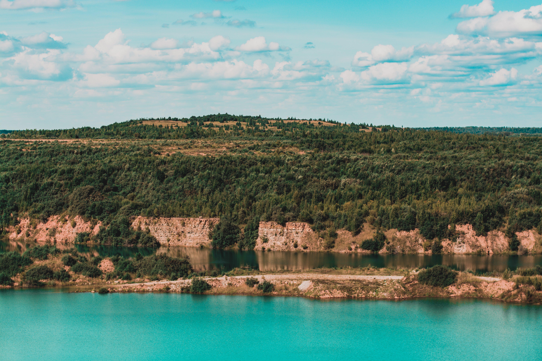 Immagine gratuita di acqua, alberi, alto, colori