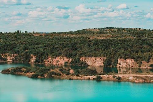 Gratis lagerfoto af bjerge, blå himmel, blade, dagslys
