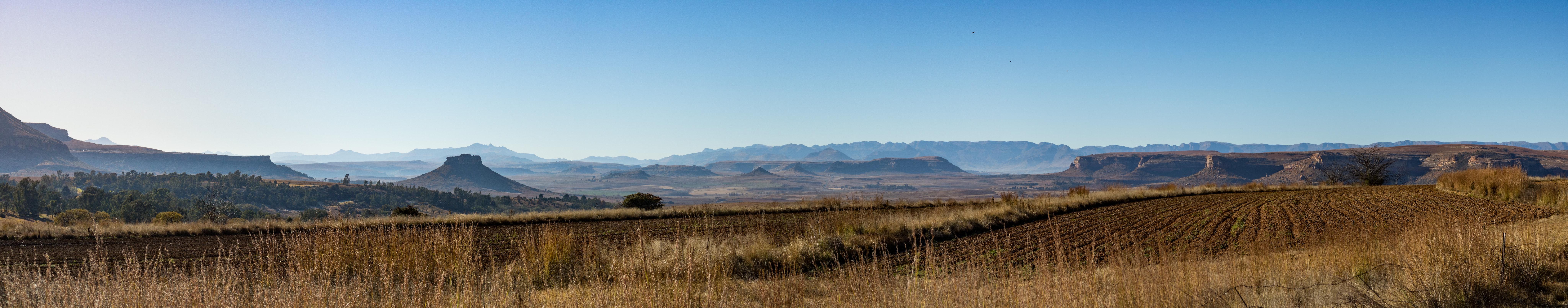Foto Gratuita Di Paesaggio Savana Sfondo 4k