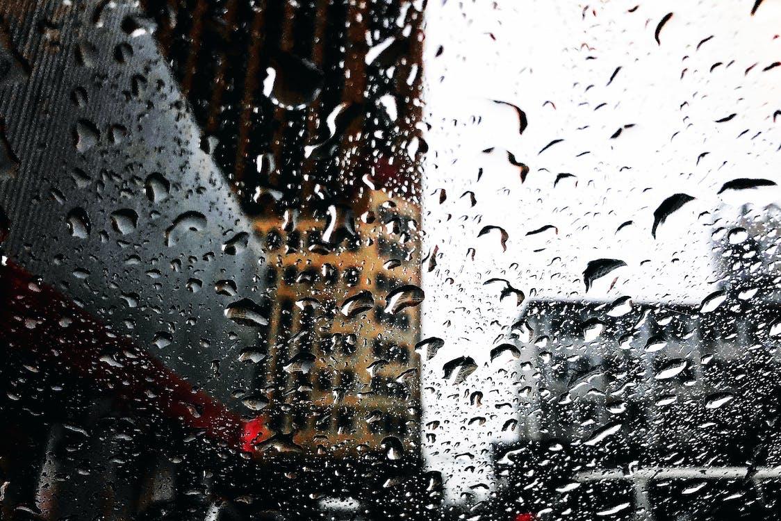głębia pola, krople, krople deszczu