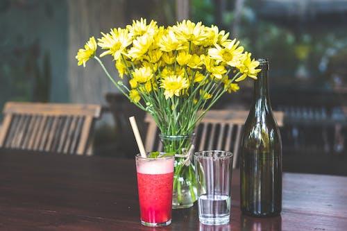 Immagine gratuita di acqua, alcol, bevanda, bicchiere