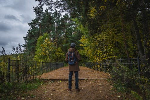 Man Standing in Front of Trees