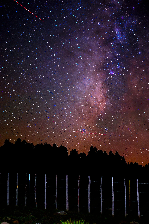 Kostenloses Stock Foto zu astronomie, bäume, dunkel, konstellation