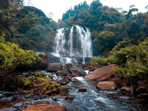 パーク, フロー, 山岳, 岩の無料の写真素材