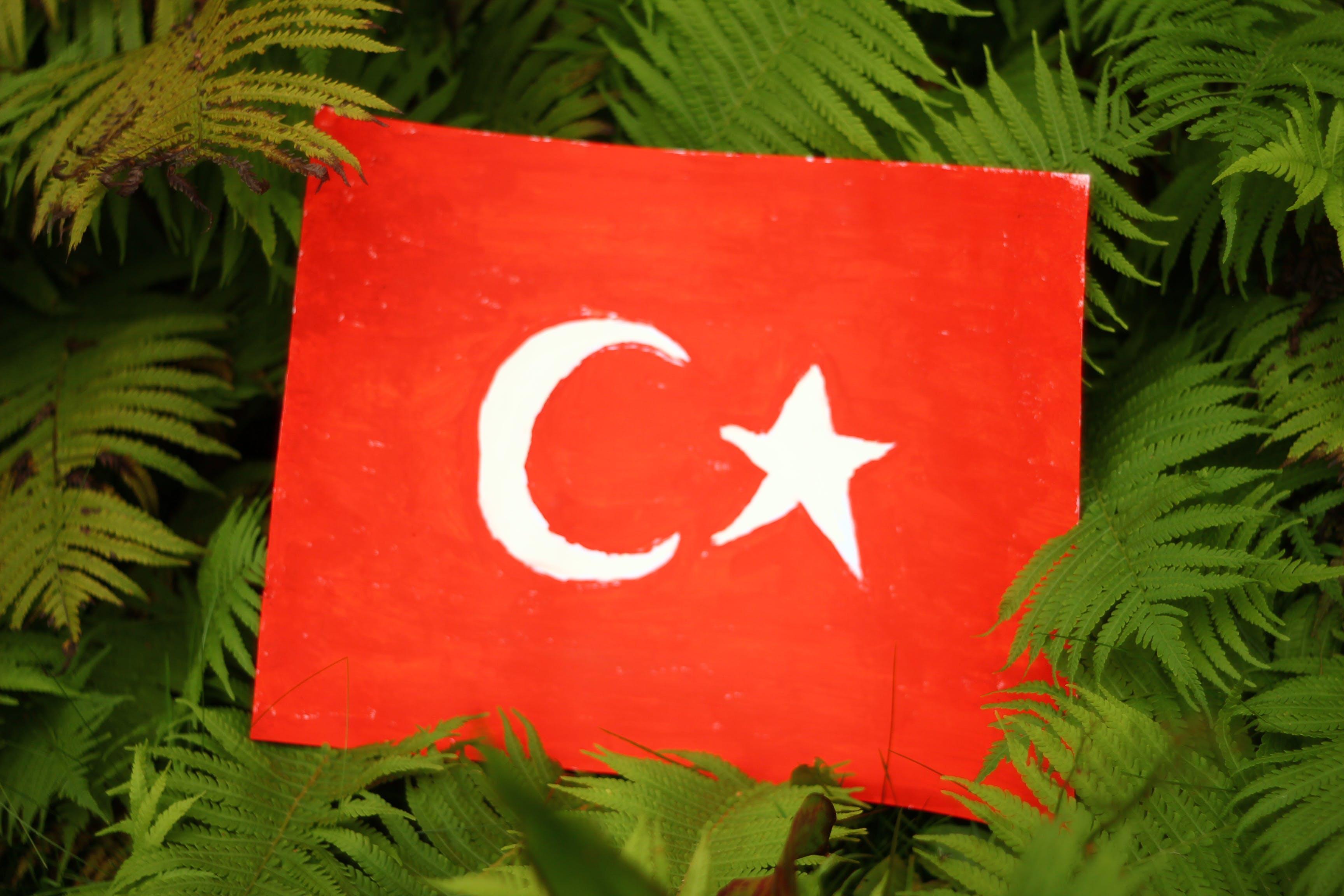 Free stock photo of Turkish Flag