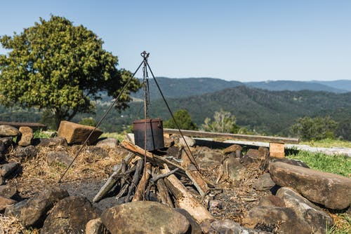 คลังภาพถ่ายฟรี ของ กาต้มน้ำ, นา, พฤกษชาติ, พื้นที่เกษตร