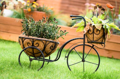 Free stock photo of bicycle, bicycle frame, flower pot, flower pots