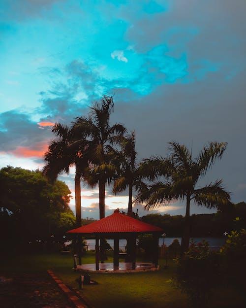 Základová fotografie zdarma na téma dramatická obloha, krajina, krásný, modrá obloha