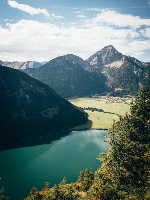 Foto d'estoc gratuïta de aigua, alps, arbre, avet