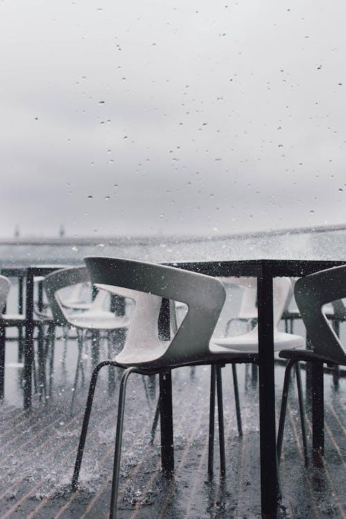 Immagine gratuita di acqua, bianco e nero, esterno, freddo