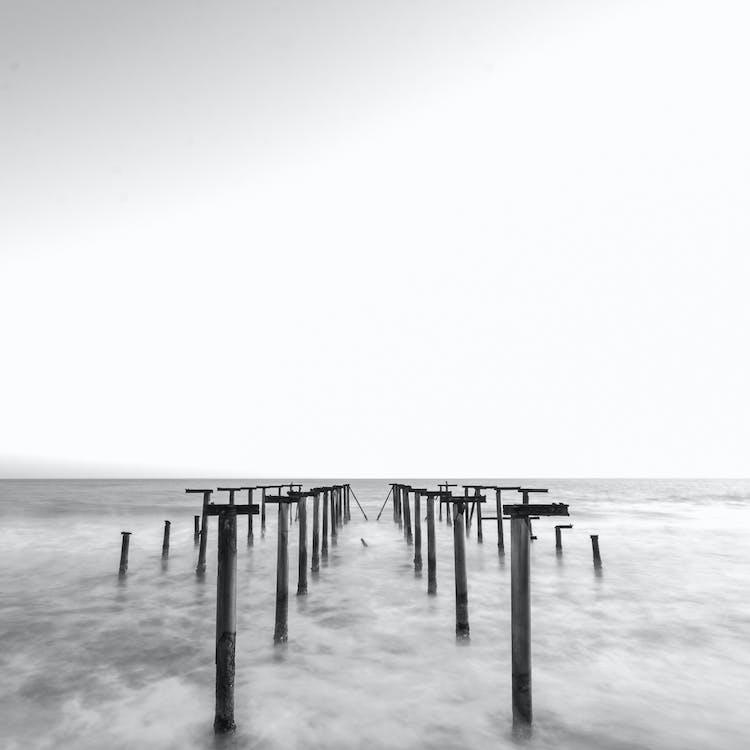 Dock Posts Grayscale Photo