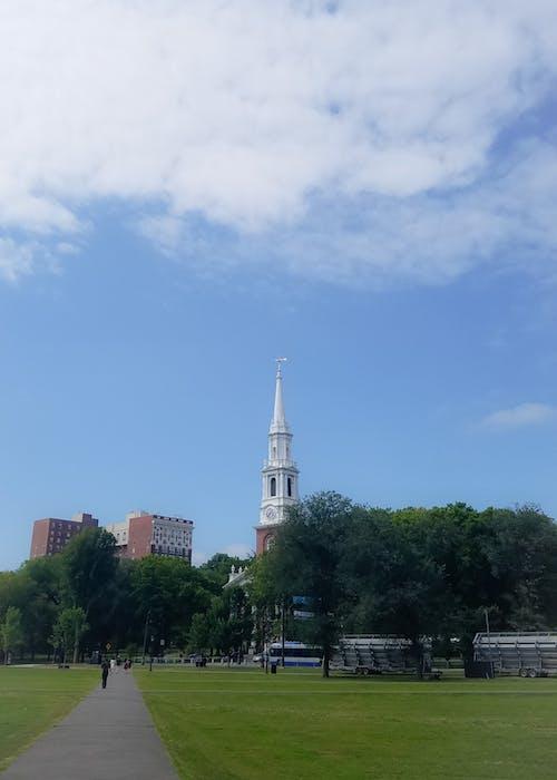 Gratis lagerfoto af blå, grøn, himmel, kirke