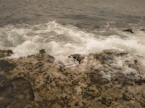 Ilmainen kuvapankkikuva tunnisteilla meri