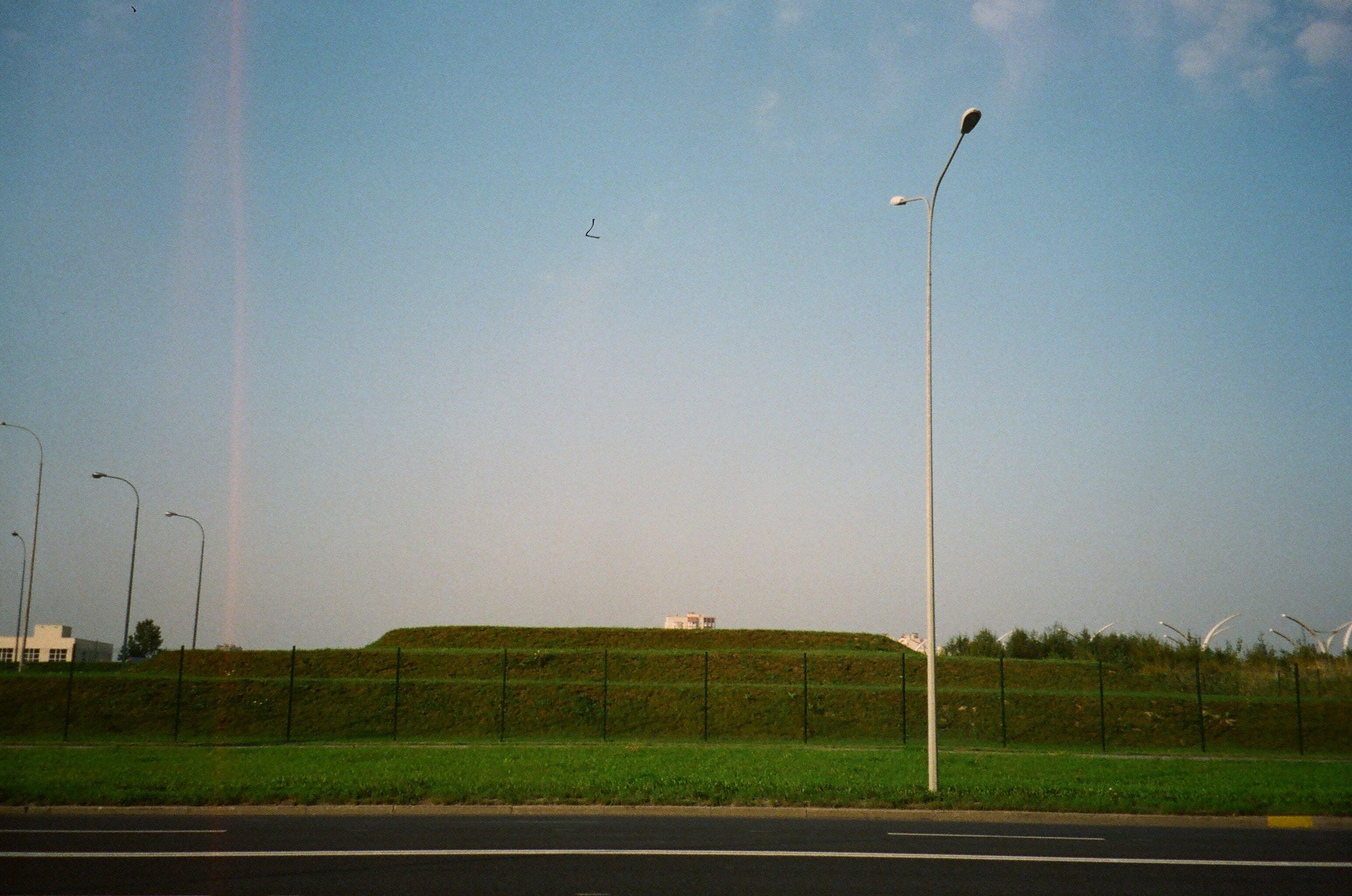White Street Light Near Green Grasses
