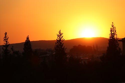 Бесплатное стоковое фото с HD-обои, восход, гора, деревья