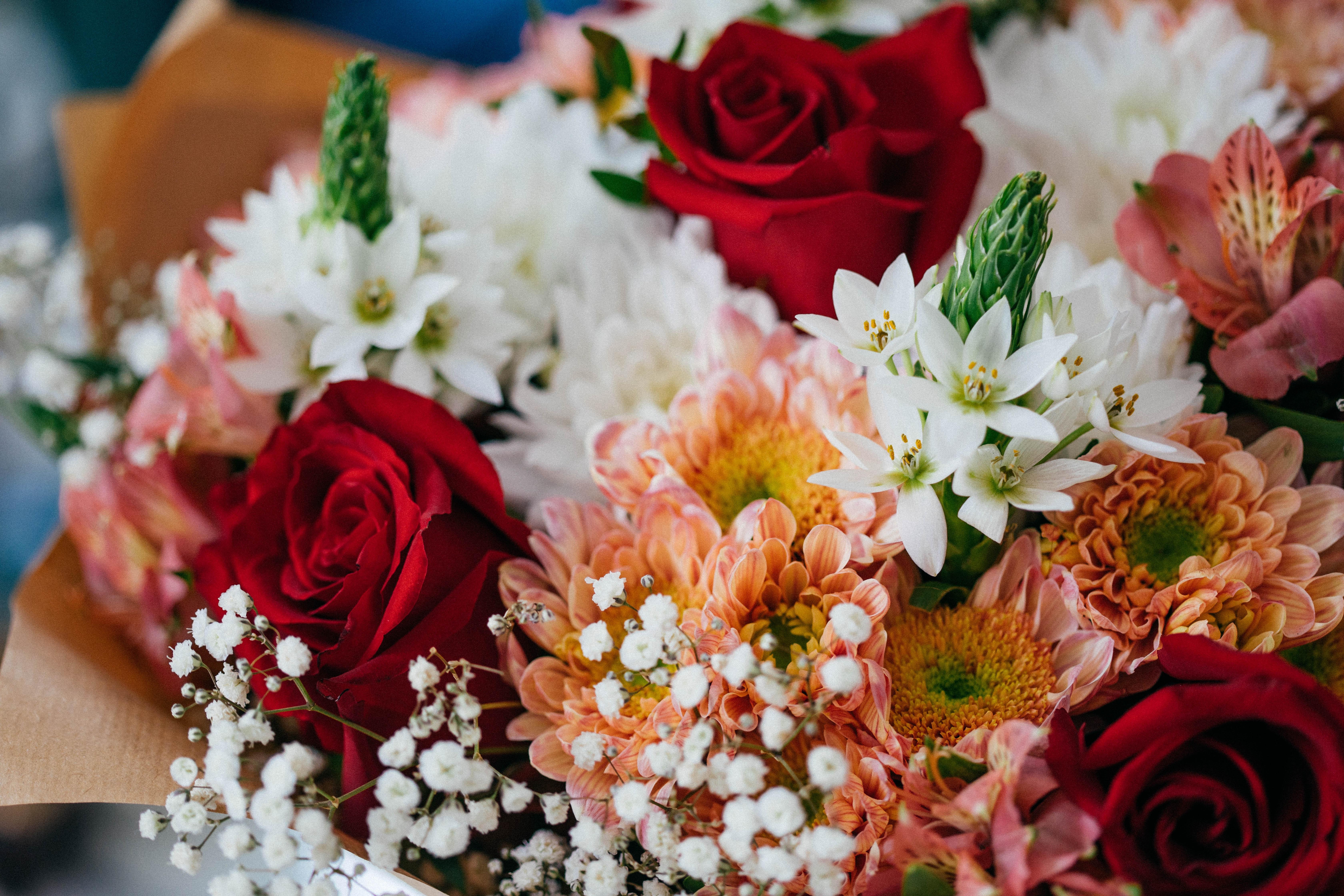 1000 Engaging Flower Bouquet Photos Pexels Free Stock Photos
