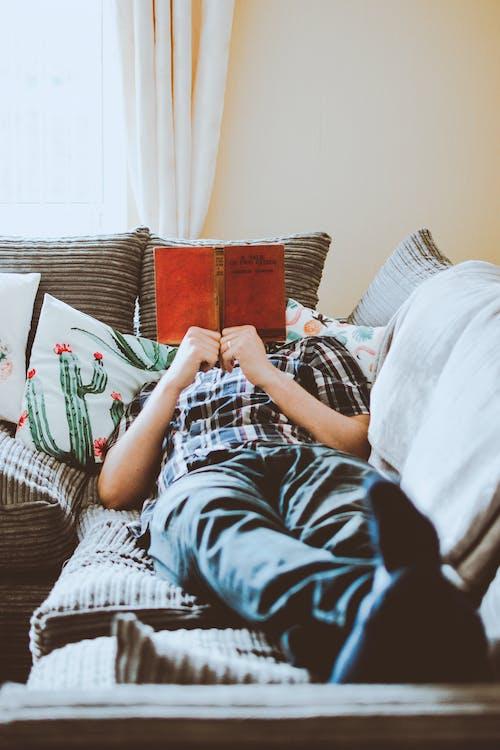 가구, 누워 있는, 독서하는
