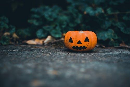 Gratis stockfoto met 31 oktober, 4k achtergrond, 4k bureaublad, angstaanjagend