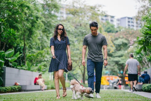 Man in Gray Crew-neck T-shirt Walking Beside Woman in Black V-neck Dress
