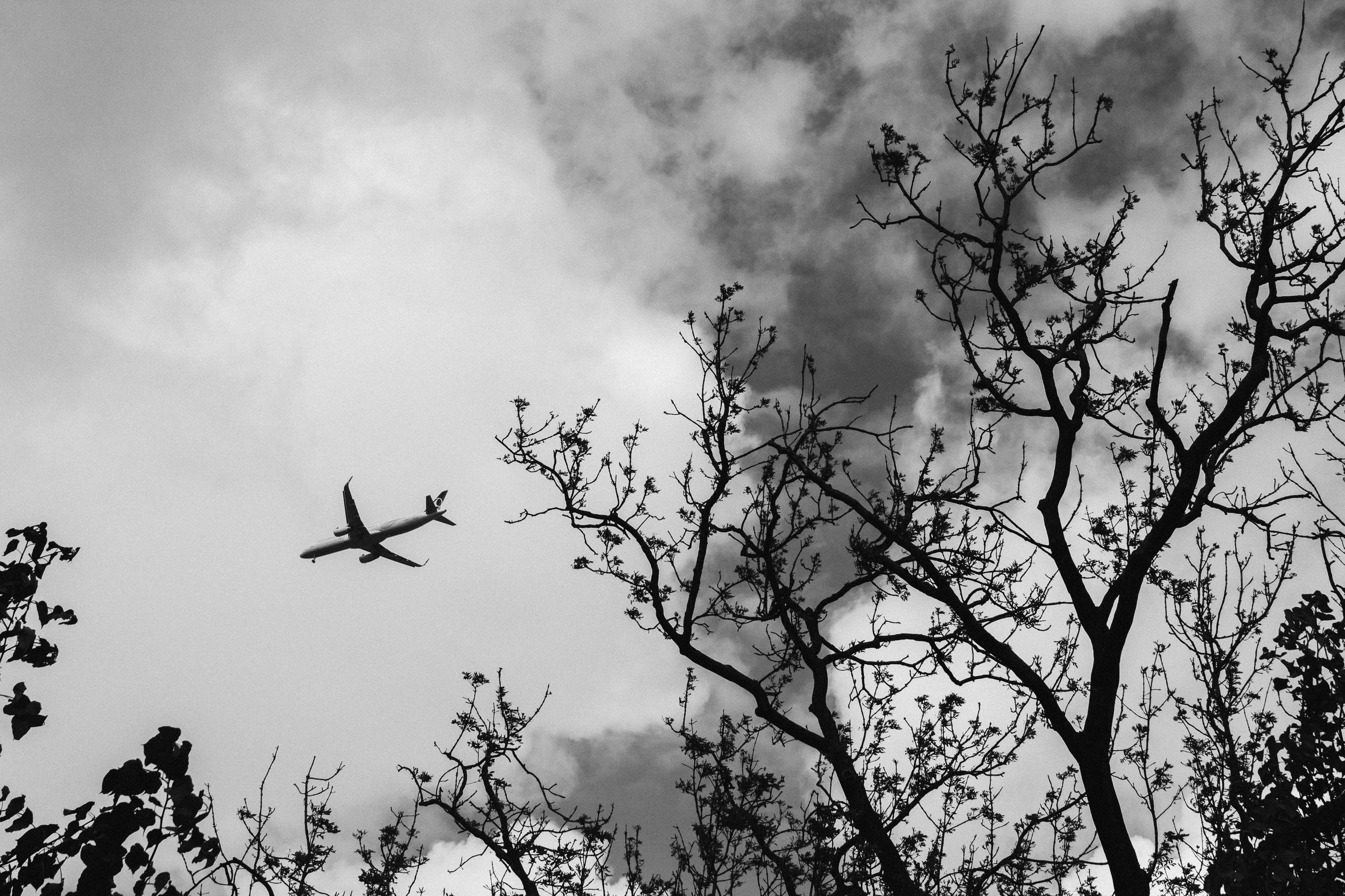 Black-and-White Photography of Airplane