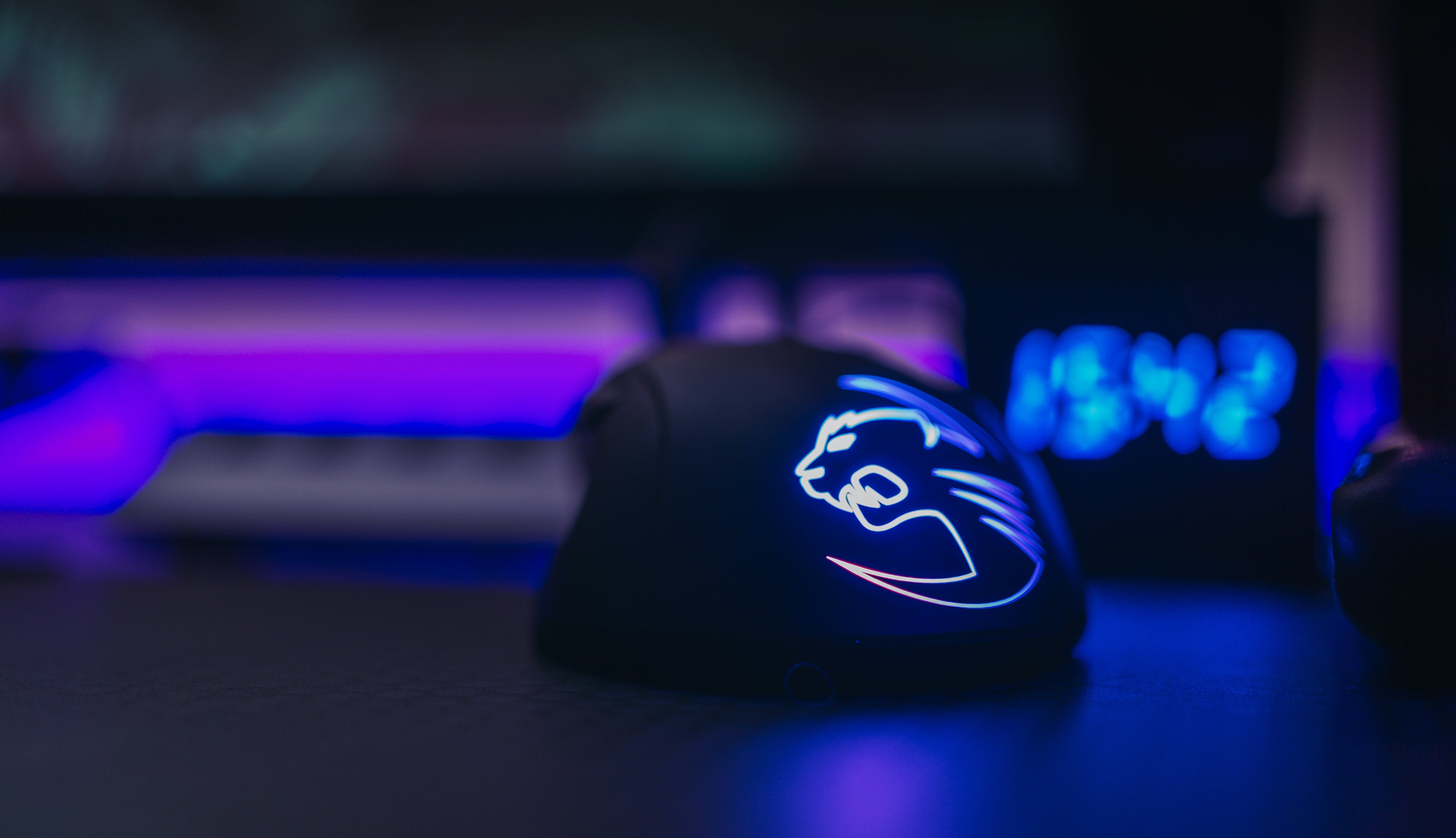 Selective Focus Photography of Black Gaming Mouse