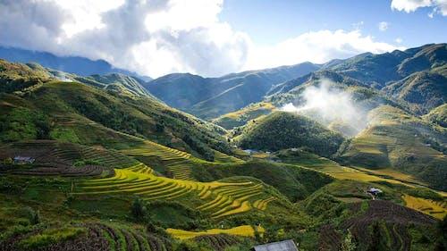 Gratis stockfoto met berg, daglicht, gras, groen