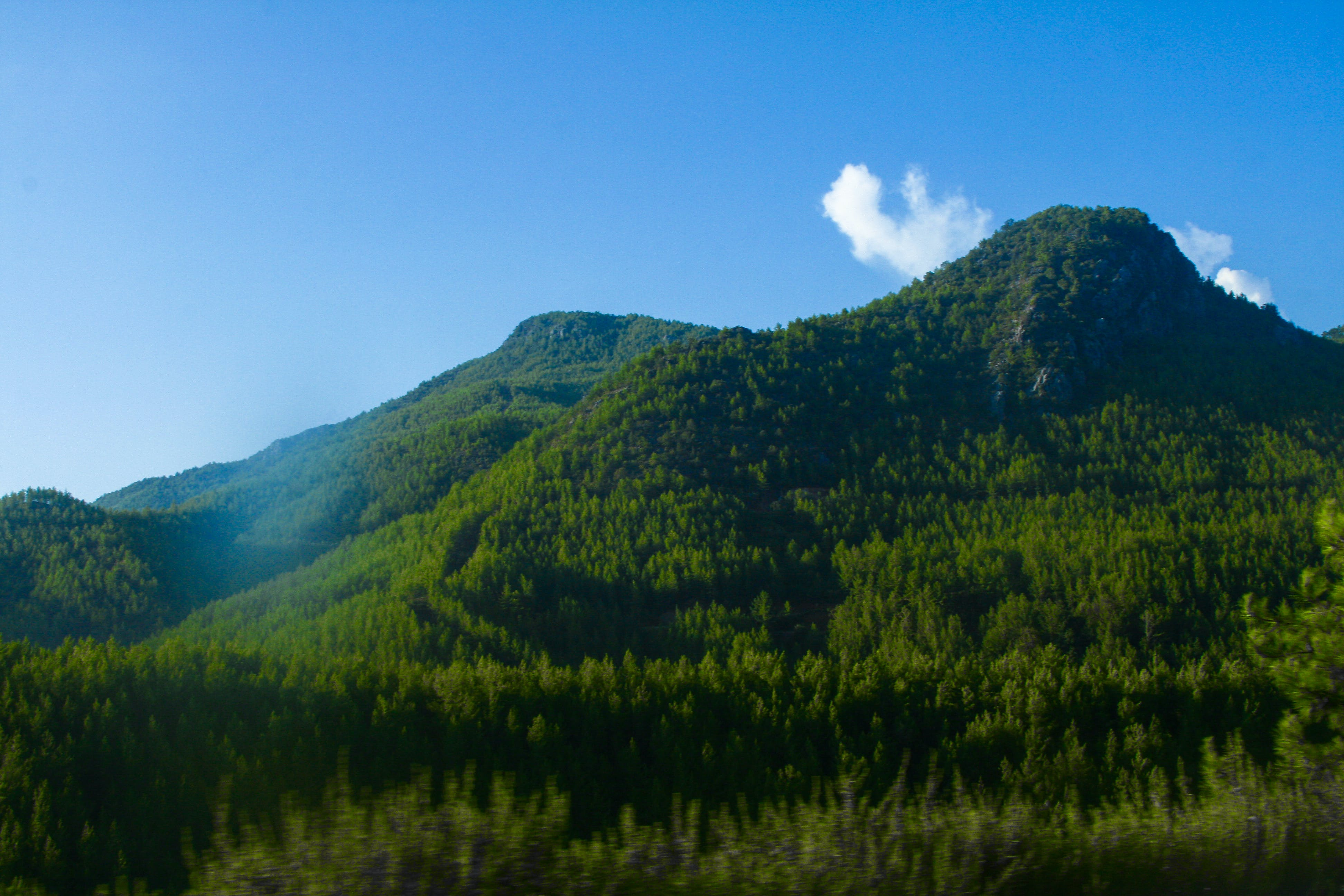 Free stock photo of green, green mountains