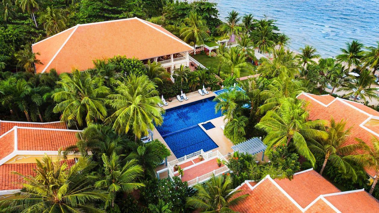 högvinkelskott, hotell, palm