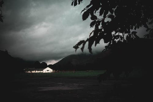 Free stock photo of branch, building, dark