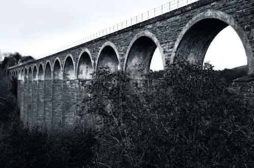 Gratis arkivbilde med roman viaduct