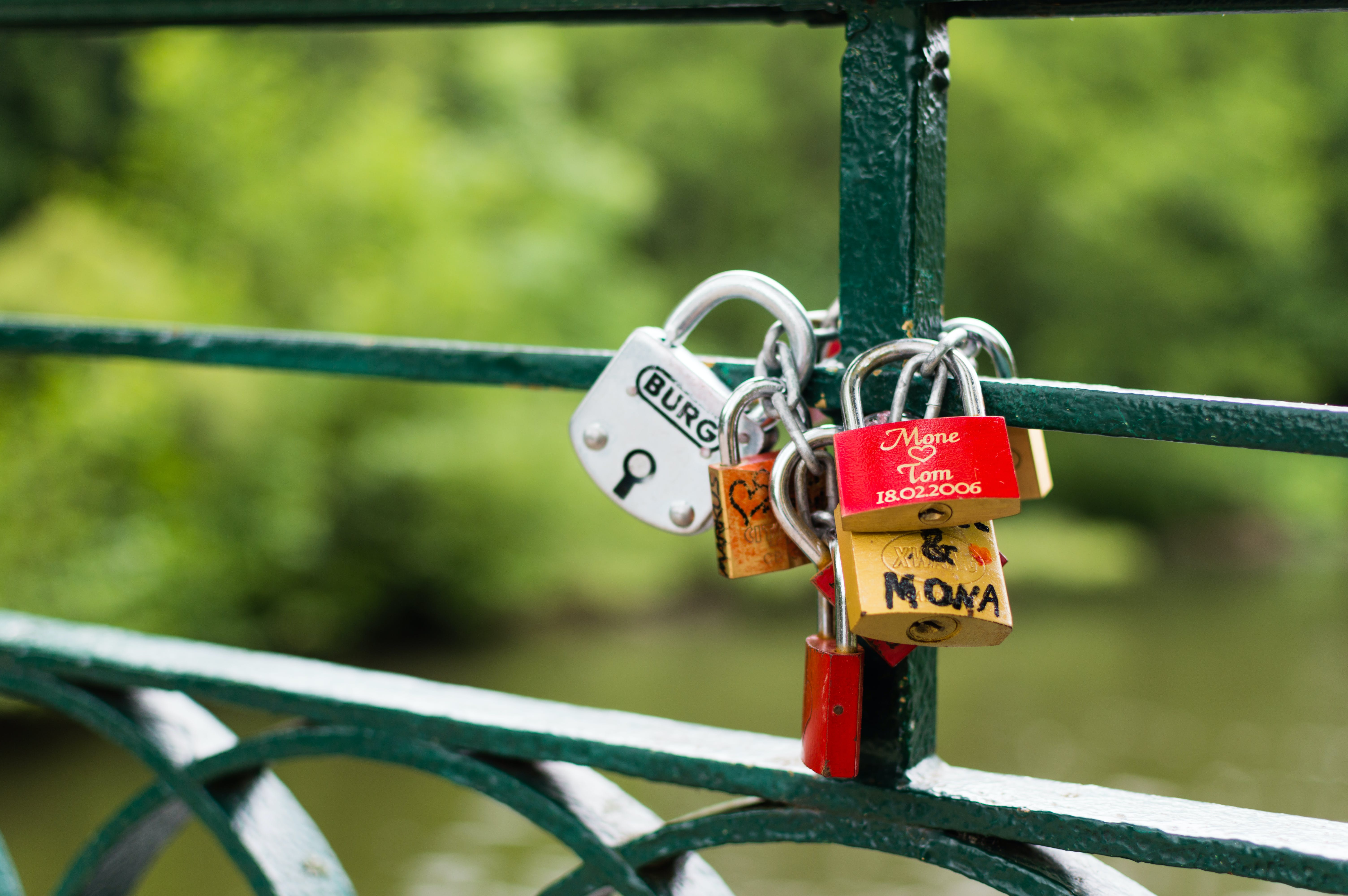 Silver Brown and Red Padlock on Green Steel Trail