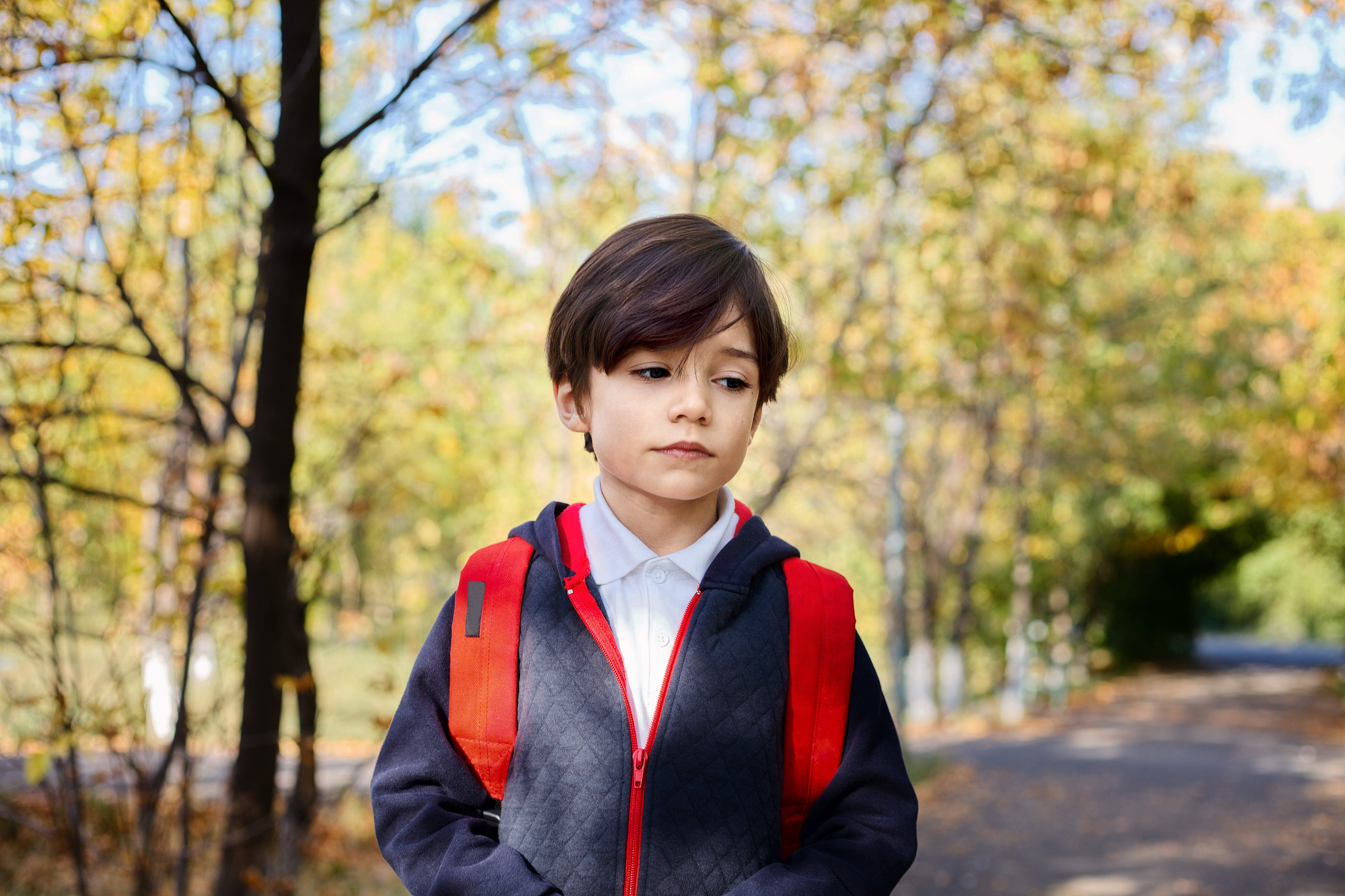Free stock photo of backpack, boy, city park, jungle