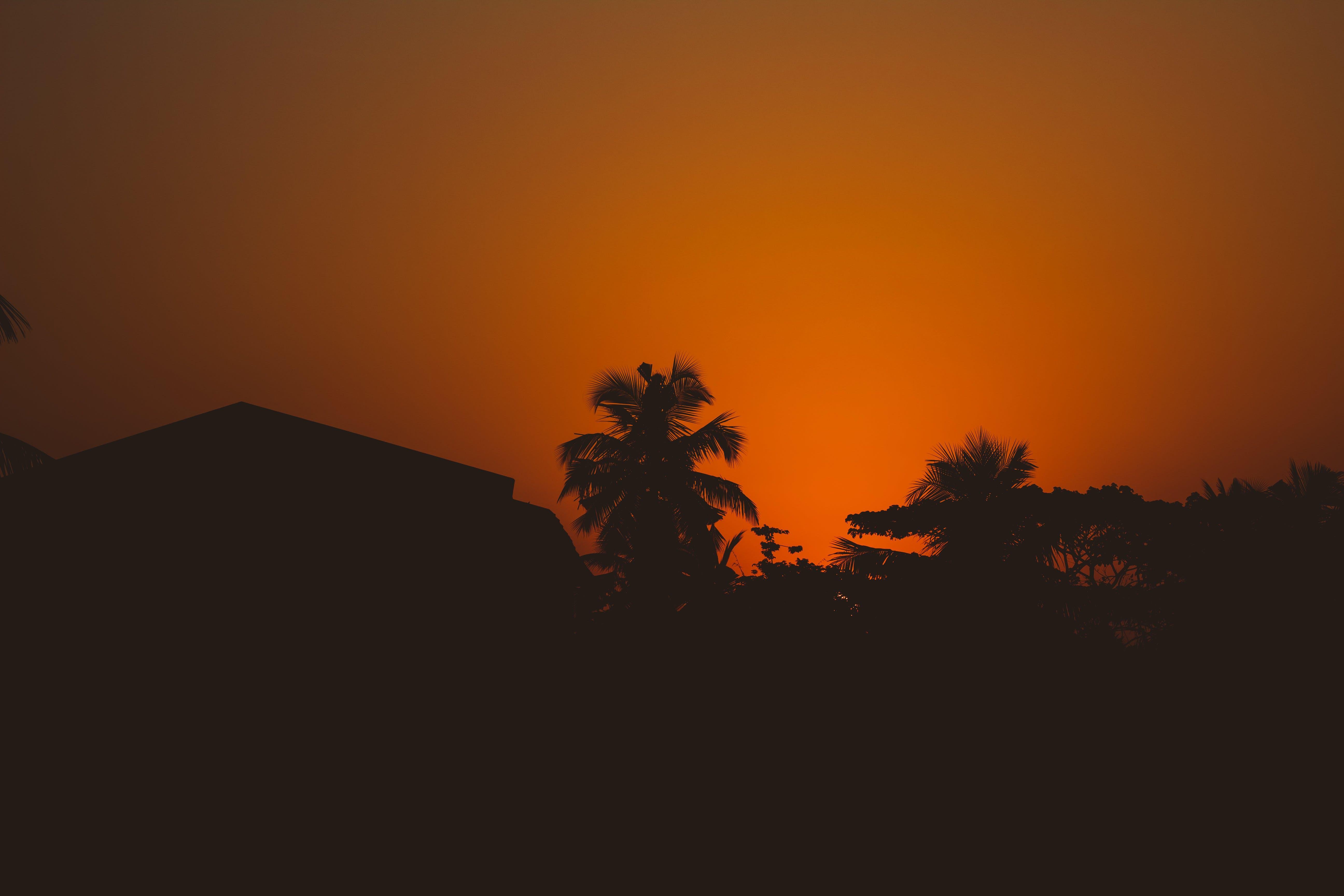 Kostenloses Stock Foto zu dämmerung, sonnenuntergang, sonnenaufgang, silhouette