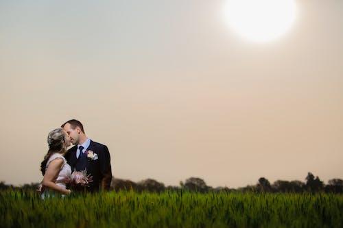 Free stock photo of bride, bride and groom, groom