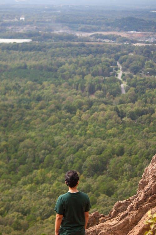 Gratis stockfoto met berg, bladerdak, bomen, crowders berg