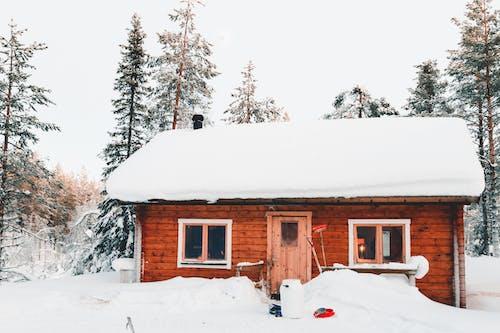 ağaçlar, buz tutmuş, camlar, dağ evi içeren Ücretsiz stok fotoğraf