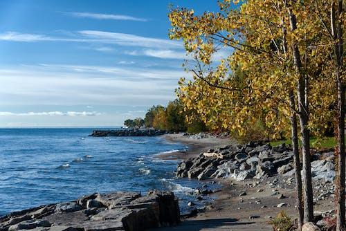 Ilmainen kuvapankkikuva tunnisteilla hiekkaranta, kivet, maisema, merenranta