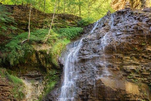 Imagine de stoc gratuită din apă, arbori, cascadă, centrale