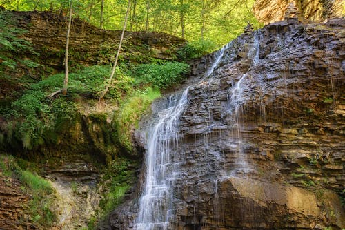 Безкоштовне стокове фото на тему «вода, Водоспад, дерева, заводи»