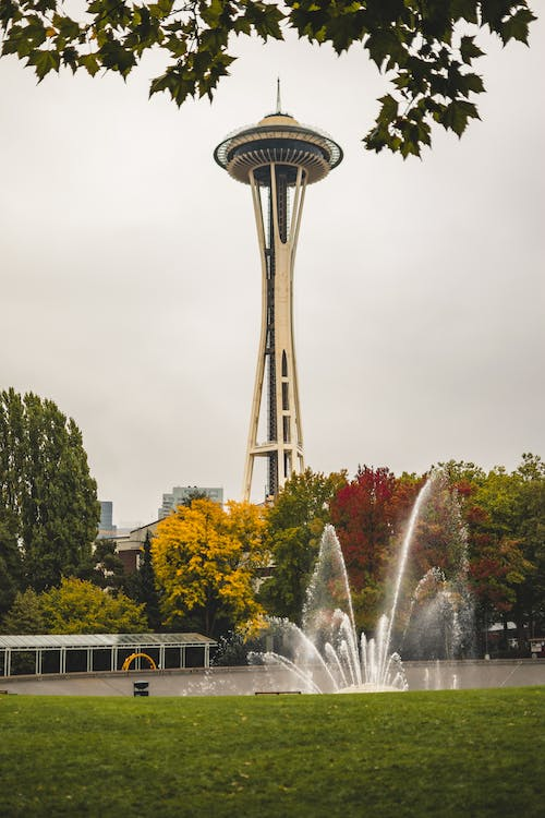 Free stock photo of fall colors, seattle space needle, trees