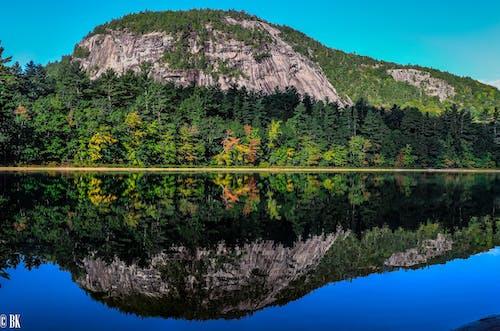 Бесплатное стоковое фото с белые горы, вода, деревья, отражение