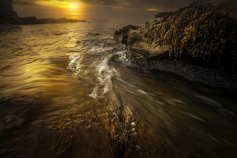 Gratis stockfoto met dageraad, golven, h2o, natuur