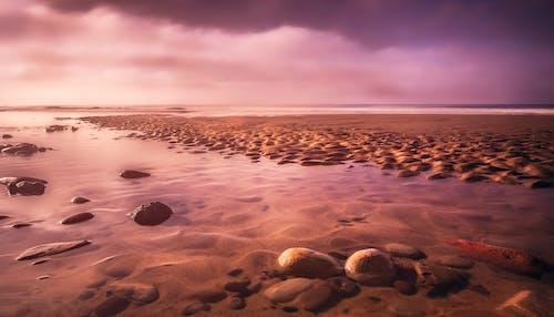 คลังภาพถ่ายฟรี ของ กลางแจ้ง, ช่วงแสงสีทอง, ชายหาด, ตอนเย็น