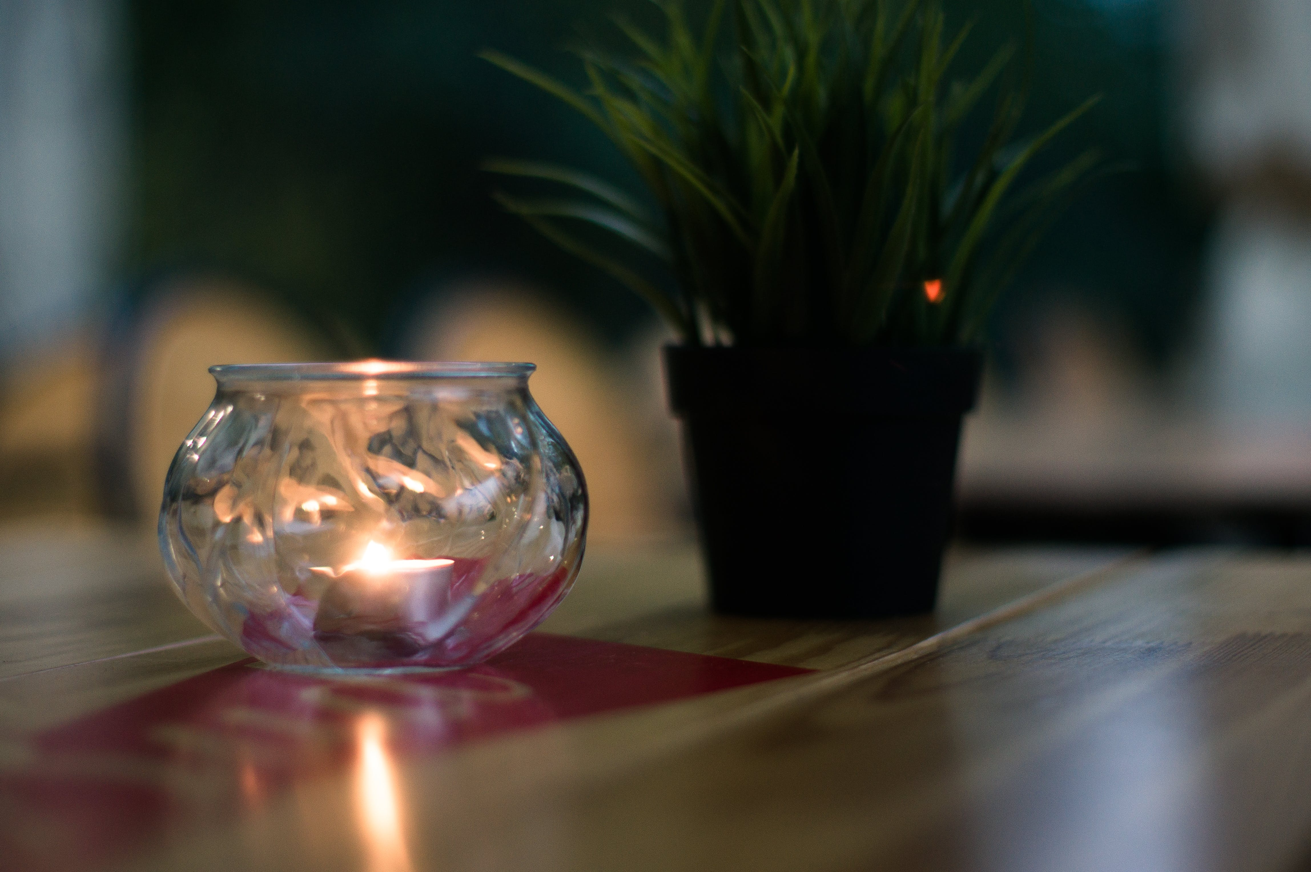 Free stock photo of café, candle, flower, food table