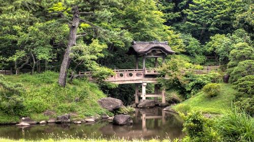Kostnadsfri bild av bro, gräs, landskap, naturskön