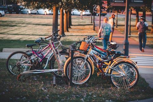 停車場, 批量, 日落 的 免费素材照片